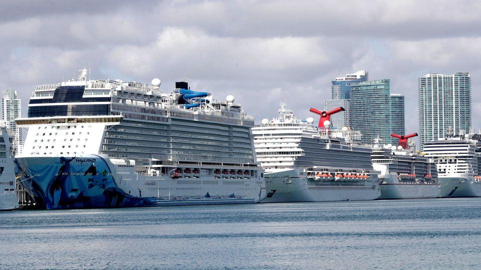 Hintereinander aufgereiht: Kreuzfahrtschiffe liegen im Hafen von Miami