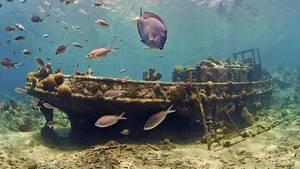 Schiffswrack unter Wasser
