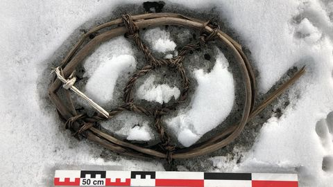 EinSchneeschuh für Pferde, der auf fast 2000 MeternHöhe auf dem Eis liegend gefunden wurde