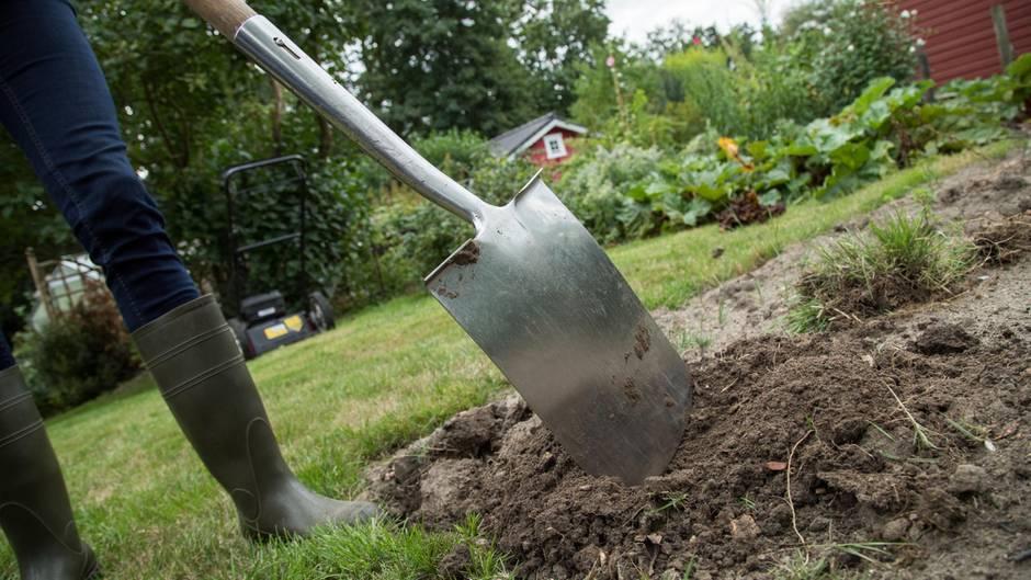 Garten umgraben: Person sticht mit einem Spaten ein Stück Rasen ab