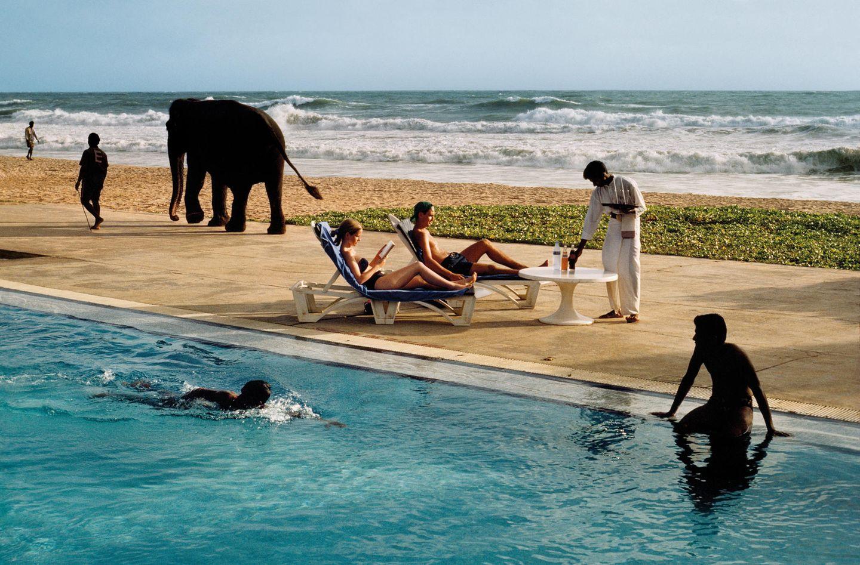 Menschen und ein Elefant zwischen Pool und Meer