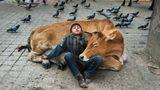 Ein Junge und eine Kuh schlafen auf der Straße