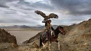 Einer Reiter mit einem riesigen Adler auf der Schulter