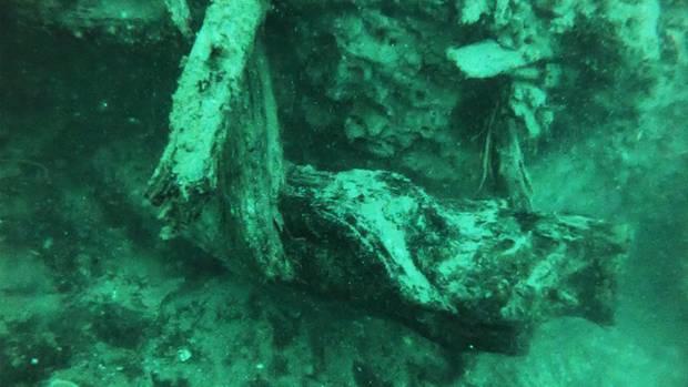 Ein Unterwasserwald im Golf von Mexiko