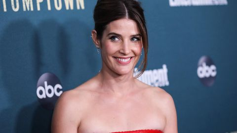 """How I Met Your Mother""-Star Cobie Smulders"