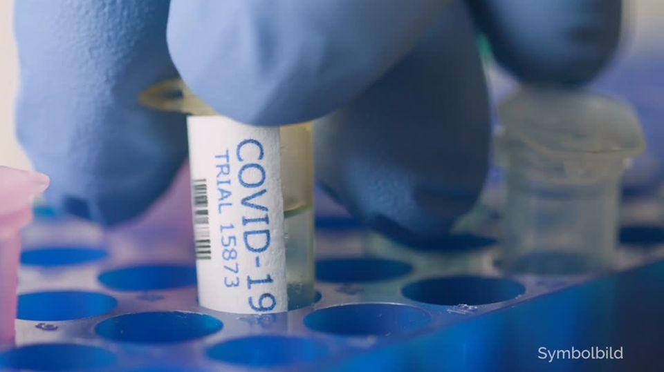 """Finger in einem blauen Handschug greifen eine Plastik-Ampulle mit """"Covid-19""""-Beschriftung aus einem blauen Halter"""