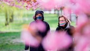 Zwei Frauen mit farbigen Mundschutzen gehen unter blühenden Kirschbäume