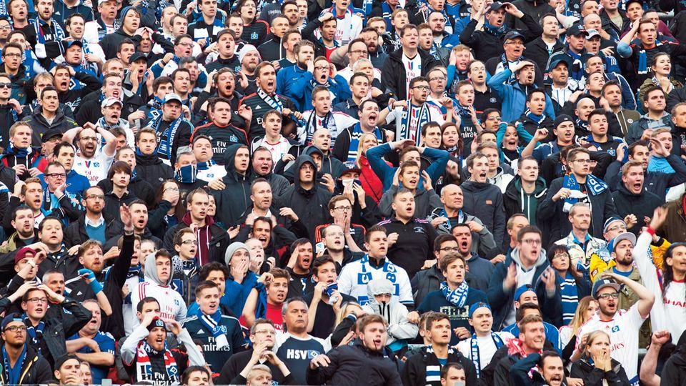 Fans des HSV verfolgen ein Spiel