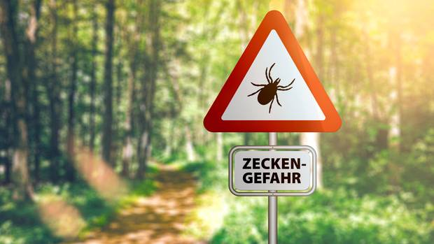 Warnschild für Zecken