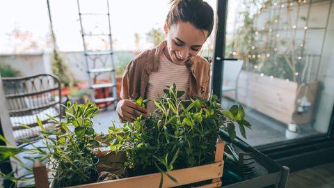 10 Tipps für Nachhaltigkeit : Etwas nachhaltiger leben? Das ist gar nicht so schwer - mit diesen 10 Tipps für den Alltag