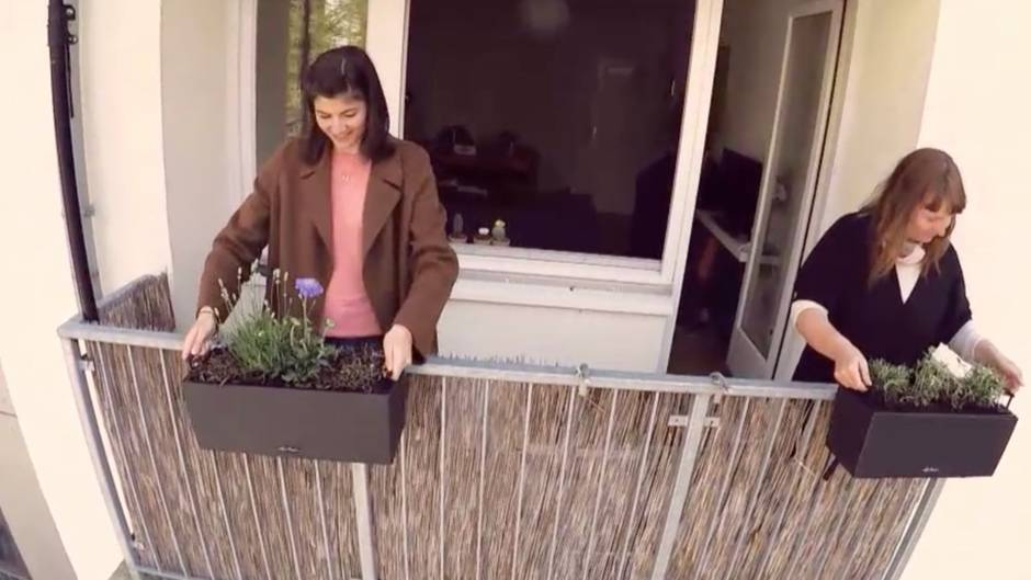 Die Blumenexpertin gibt Tipps, wie man seinen Balkon richtig bepflanzt