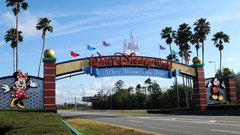 """Florida: """"Disney World"""": 42-jähriger Abenteurer campiert mehrere Tage auf einsamer Insel"""