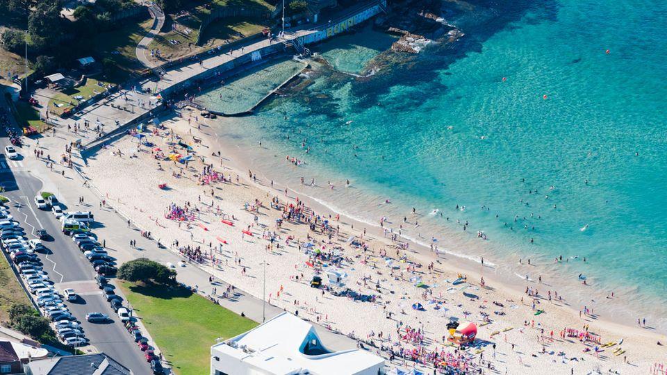 An den North Bondi Beach zieht es vor allem die Locals