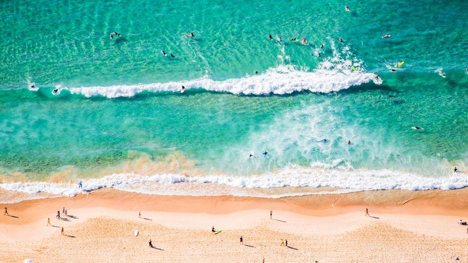 Der bekannteste Strand von Sydney: Bondi Beach im Osten der Stadt ist auch der Surfspot
