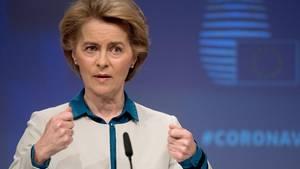 EU-Präsidentin Ursula von der Leyen leitete die Konferenz virtuell