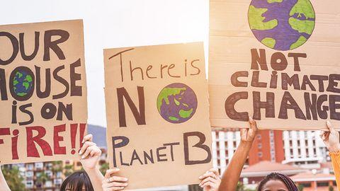 CO2-Abdruck: Sie wollen Ihren CO2-Abdruck verkleinern? So funktioniert's