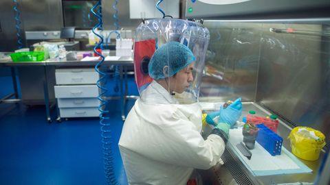 Dieses Archivfoto vom Februar 2017 zeigt das P4-Labor in Wuhan