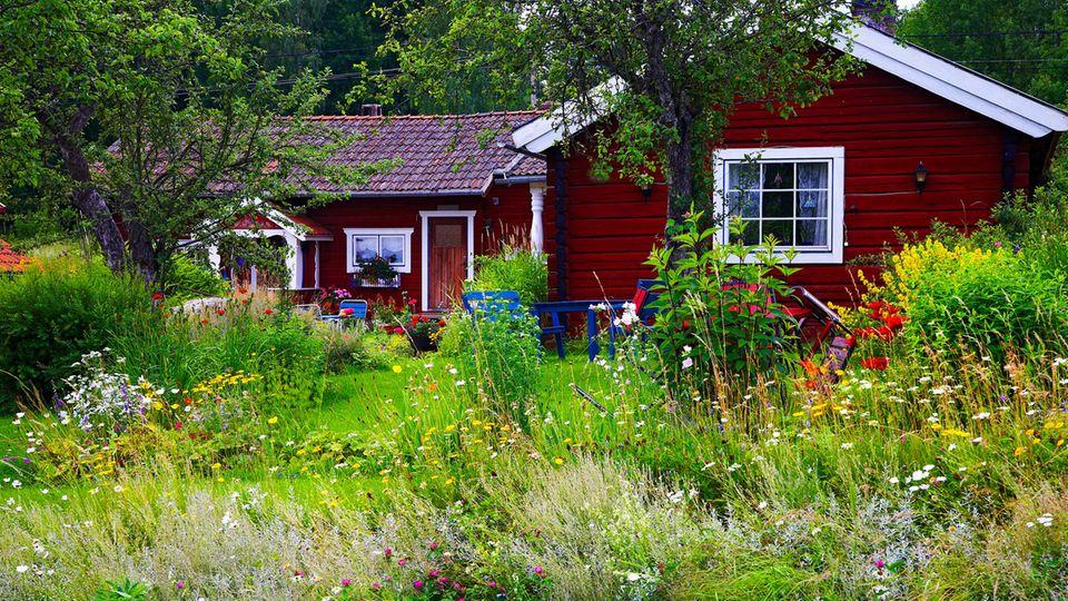 Vitamin N wie Natur: Warum uns gerade jetzt ein Garten so gut tut – und wie Profis ihn anlegen