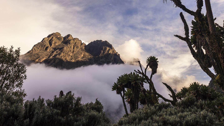 """Margherita Peak, Uganda  Der Mount Meru in Tansania ist ein beliebtes """"Warm-up""""für Trekker, die seinen größeren Cousin, den Kilimandscharo, in Angriff nehmen wollen. Eine mehr als einwöchige Trekkingroute führt vom Trailhead des Nationalparks zum Margherita Peak, dem dritthöchsten Berg Afrikas, und dann als Rundweg zurück."""
