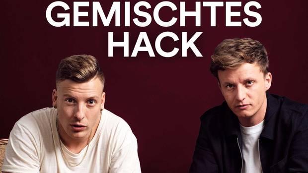 Gemischtes Hack