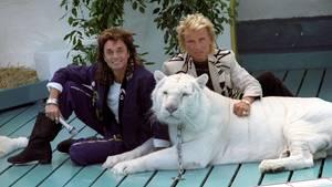 Roy Horn und Siegfried Fischbacher mit einem ihrer weißen Tiger Anfang der Neunziger