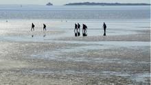 An der Nordseee: Am Strand bei Nieblum auf der Insel Föhr gehen Ausflüglerbei strahlendem Sonnenschein am Strand spazieren