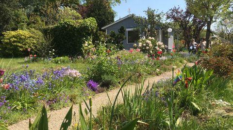 Raus ins Grüne: Willkommen in meinem Paradies - eine Ode an den Kleingarten in Krisenzeiten