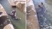Ein Mann probiert im Warschauer Zoo einen Bär zu ertränken