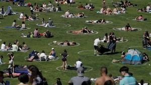 Besucher sitzen im Park in eingezeichneten Kreisen, die bei der Umsetzung der Abstandsregeln helfen sollen