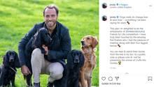 James Middleton verkauft jetzt Hundefutter