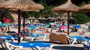 Starndliegen auf Mallorca