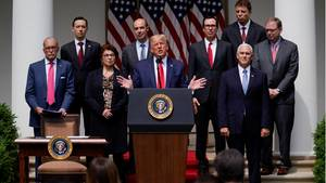 Donald Trump im Rosengarten