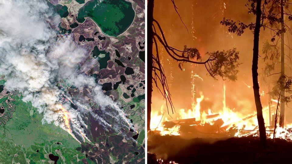 Zombie-Feuer auf der nördlichen Erdhalbkugel
