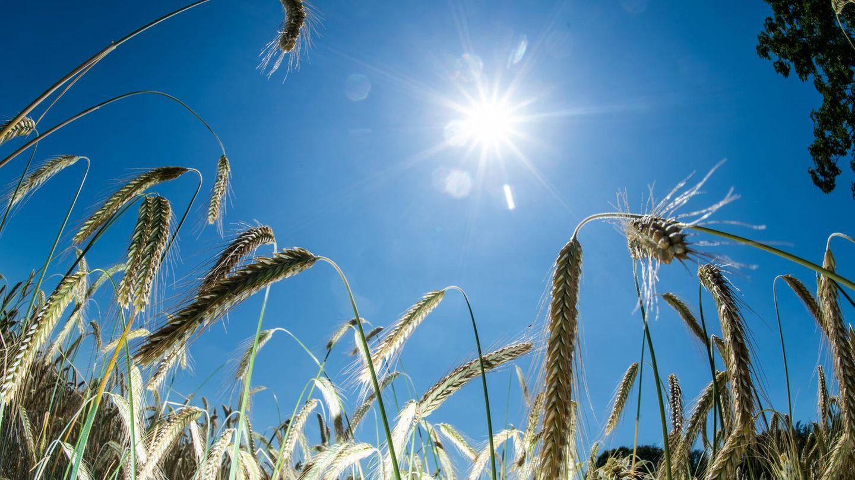 Wetter in Deutschland - Sonne am Wochenende