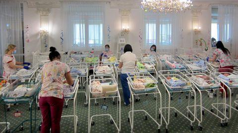 In einem Hotel am Stadtrand von Kiew warten seit Mitte März Dutzende Leihmutterbabys auf die Abholung