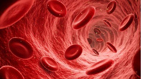 Blut Coronavirus