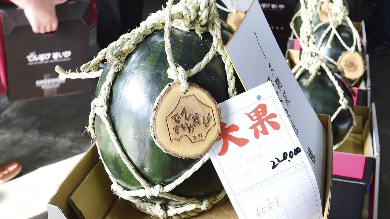 Densuke Wassernmelone