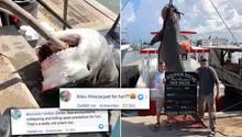 """USA: 13-Jähriger fängt 400 Kilo schweren Hai – """"Nur zum Spaß?"""""""