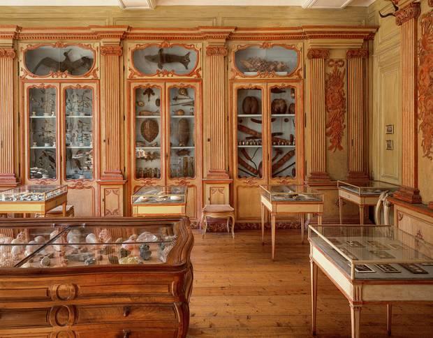 Muséum d'Histoire Naturelle de la Rochelle