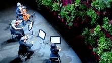 Barcelonas Oper spielt erstes Konzert nach Ausnahmezustand – das Publikum sind 2300 Topfpfanzen