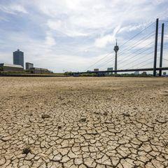 """Wissenschaftsautor Wolf Harlander: Dürre in Deutschland: """"Auf Hochwasser sind wir vorbereitet, auf das Gegenteil nicht"""", sagt der Experte"""