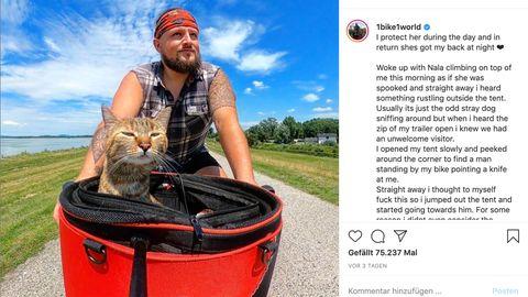 Unzertrennliches Paar: Mann nimmt streunende Katze auf und fährt mit ihr auf dem Fahrrad durch Europa