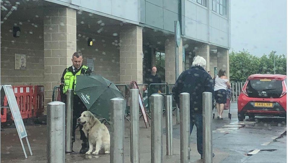 Supermarkt: Security-Mann schützt Hund vor Regen – die Szene rührt tausende Twitter-User