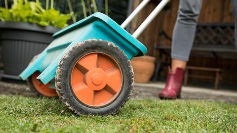 Rasen düngen und pflegen: Streuwagen für Dünger auf einem Rasen