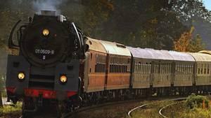 Diogo ist 1986 aus einem Zug der DDR Reichsbahn auf die Gleise gestürzt undgestorben (Symbolbild)