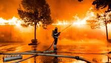 Hamburg: Ein Feuerwehrmann löscht einen Brand in einem Geschäft für Tierfutter