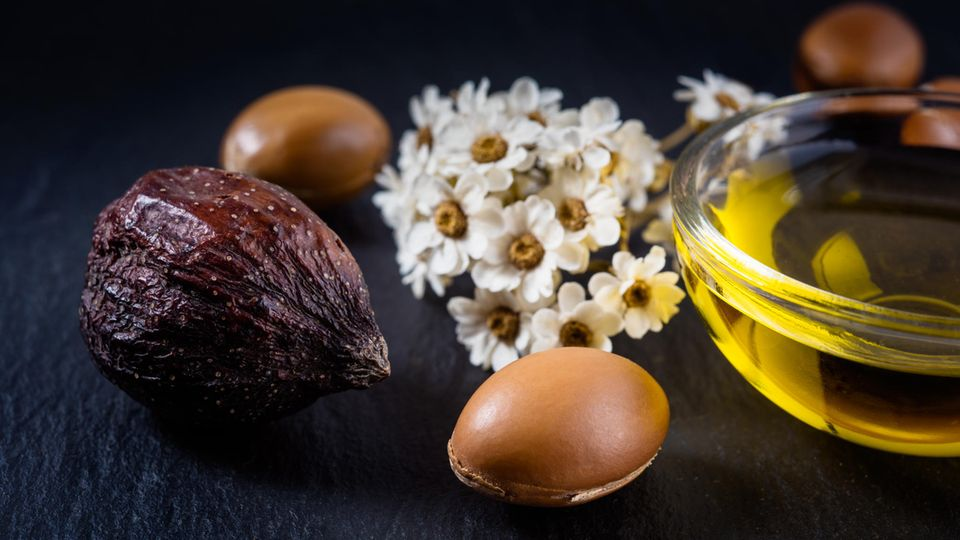 Arganöl wird aus den Früchten des marokkanischen Arganbaums gewonnen