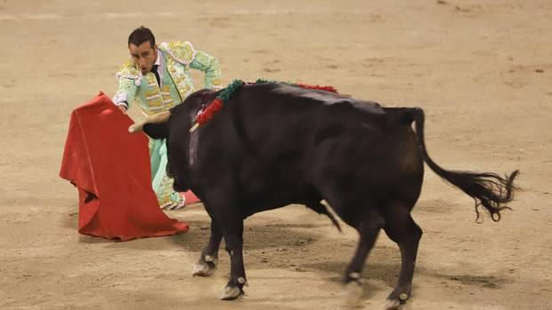 Torero reizt einen Stier