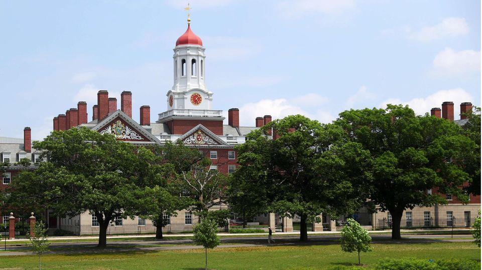 Blick auf den Campus der Harvard-Universität