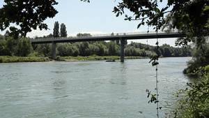 Der Rhein zwischen Hartheim und Fessenheim